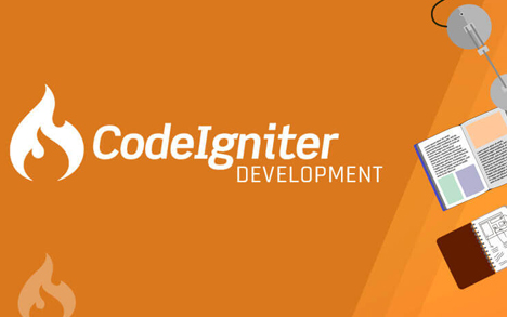Codeigniter web development company | Netpyx