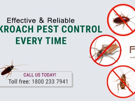 Best Cockroaches Pest Control Services