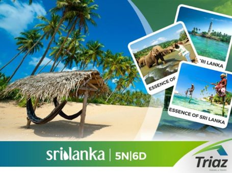 Tour Packages for Honeymoon – Triaz