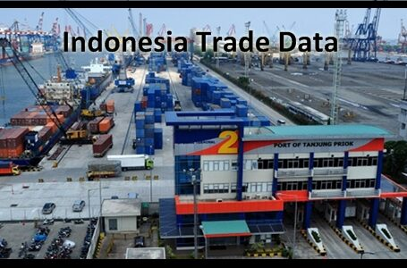 Helps to Understand Indonesia Trade Data Business