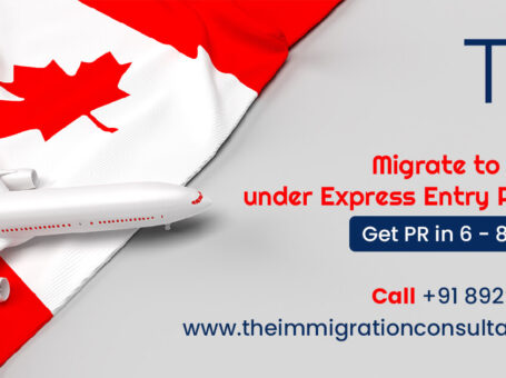 The Immigration Consultants